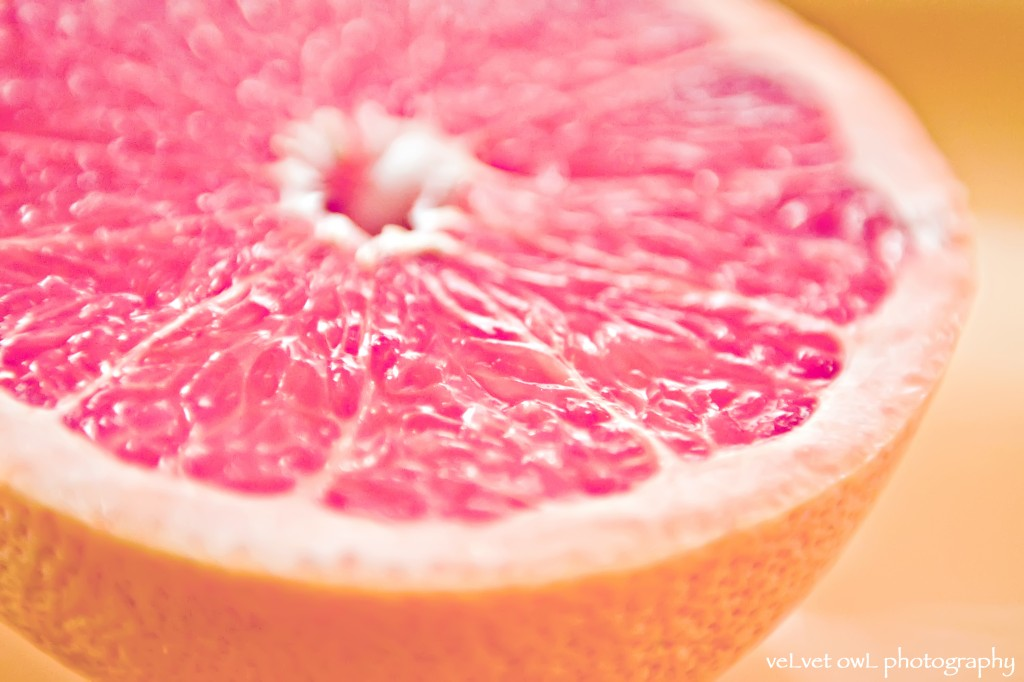 Freebie Grapefruit Wallpaper